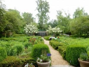 Serenity Garden blooms year-round.