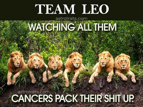 Leo Season Memes Team Leo Watching All Them Cancers Pack Their Shit