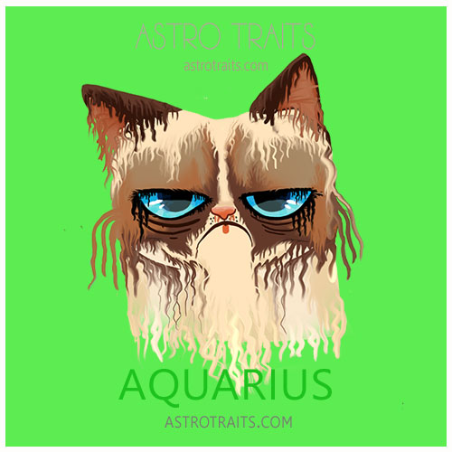 Aquarius Grumpy Cat