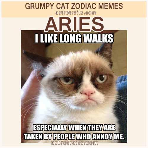 Aries Meme - Grumpy Cat