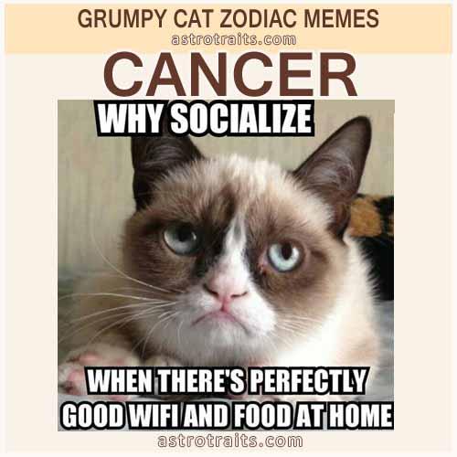 Cancer Astro Meme - Grumpy Cat