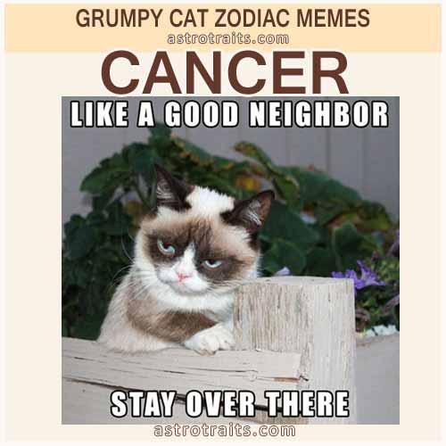 Cancer Zodiac Meme - Grumpy Cat