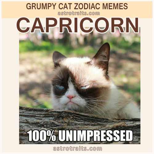 Capricorn Zodiac Sign Meme - Grumpy Cat