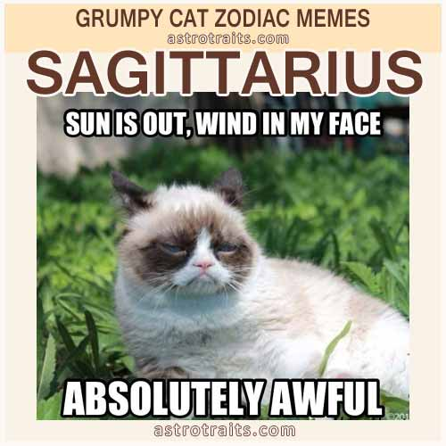 Sagittarius Meme 2 Grumpy Cat