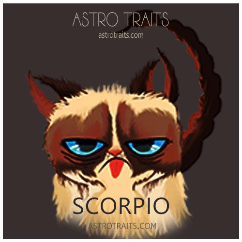 Scorpio Grumpy Cat