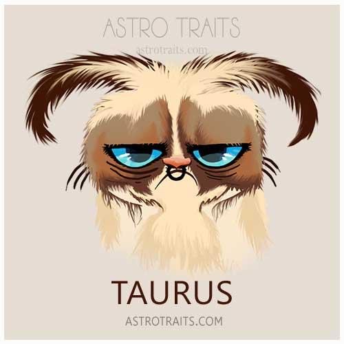 Taurus Grumpy Cat