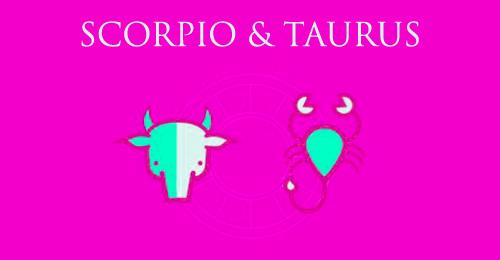 scorpio taurus relationshipc compatibility experiences