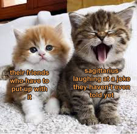 cute sagittarius meme