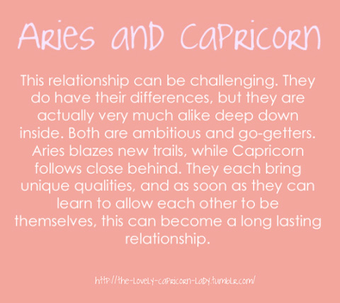 capricorn and aries