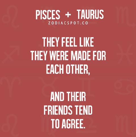 pisces + taurus