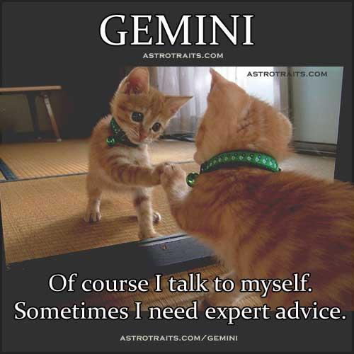 funny  gemini quotes 5