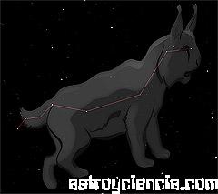 Figura de la constelación del Lince