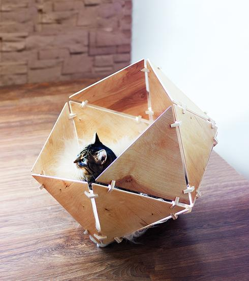 Des ides cratives pour gter votre chat  Astuces Bricolage