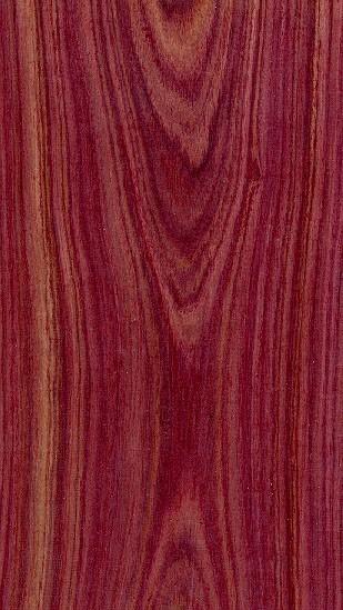 Les bois Le Bois de Violette  Astuces Pratiques
