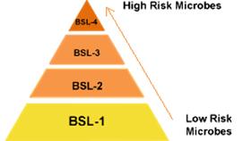 Tingakatan risiko biosafety level (BSL)