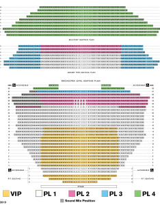 Broadway seating chart also asu gammage rh asugammage