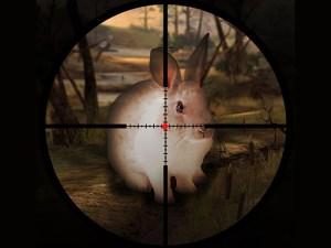 لعبة صيد الأرانب الكلاسيكية
