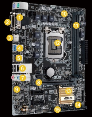 H110MA   Motherboards   ASUS Global