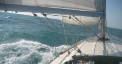 Aqua - Halbwind