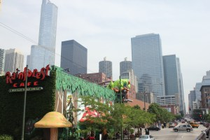 chicago-june-2011-010