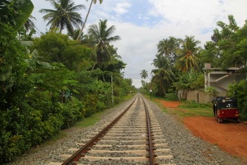 Sri Lanka Food Train
