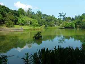 Singapore Vacation Of Your Dreams - Singapore Botanical Garden