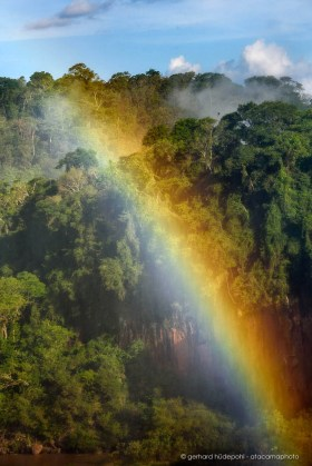 Rainbow in front of the jungle, produced by the Iguazu waterfalls