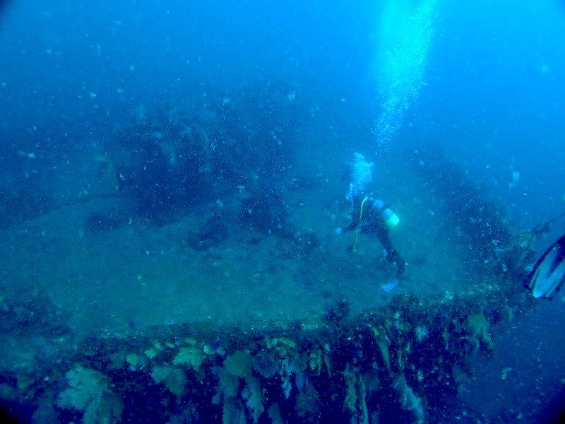 ダイビングサービス熱海