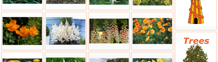 screen shot of the Bloom 2017 flowers page