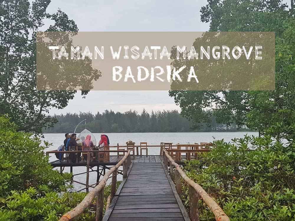Ceri A Ta Ada Apa Di Taman Wisata Mangrove Badrika