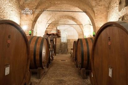 pietrantonj cellar