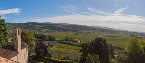 Pietro zardini landscape