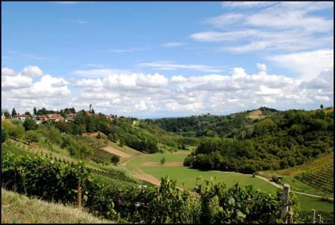Vinchio-Vaglio Serra landscape
