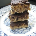 Coconut Chocolate Protein Squares