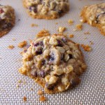 Whole Wheat Cranberry Oatmeal Chocolate Chip Cookies