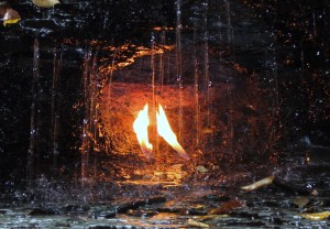 Close-up of Eternal Flame at Chestnut Ridge Park, NY
