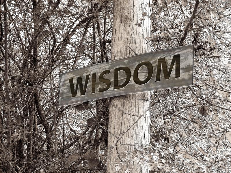 Fortune Cookie Friday: Get Wisdom