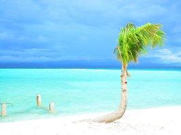 KALANGGAMAN ISLAND, Polompon Leyte Philippines
