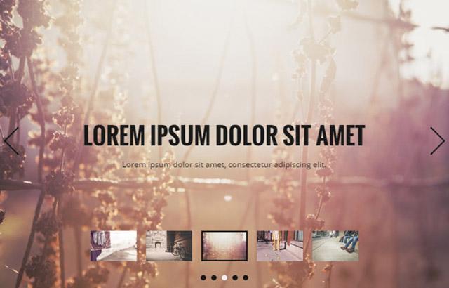 wordpress-slideshow-plugins