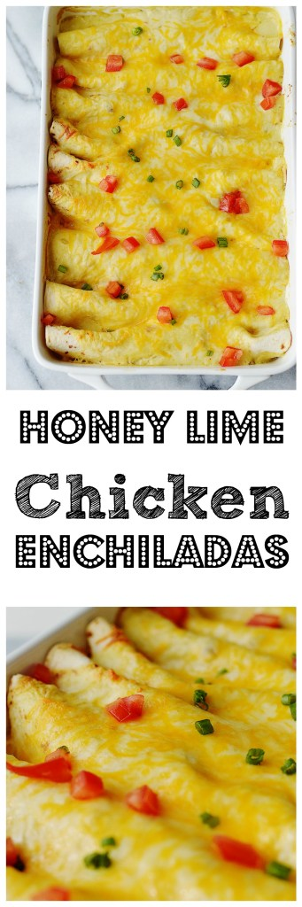 Honey Lime Chicken Enchiladas by A Teaspoon of Home