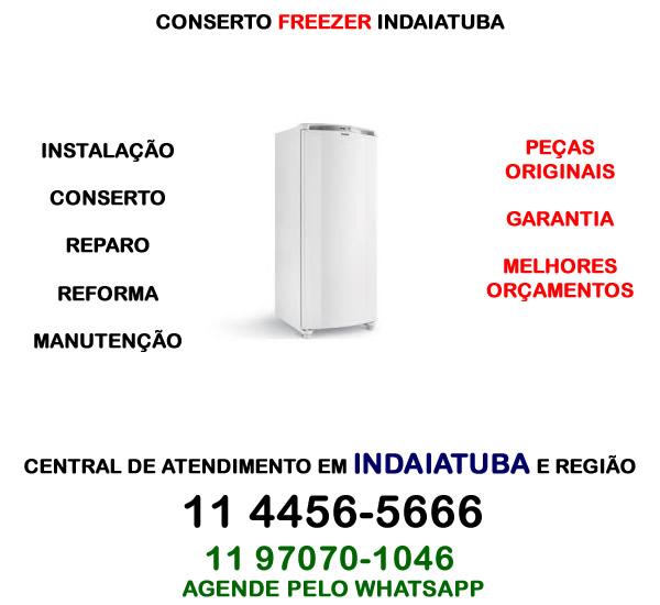 Conserto freezer Indaiatuba