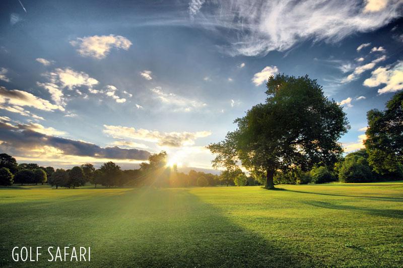 Golf Safari in Africa