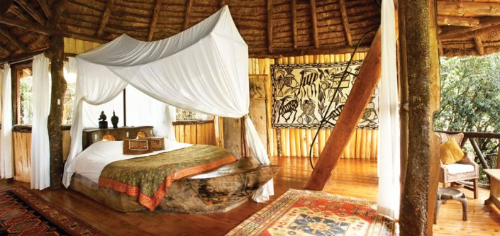 Ngong House room - Sleep in the tree!