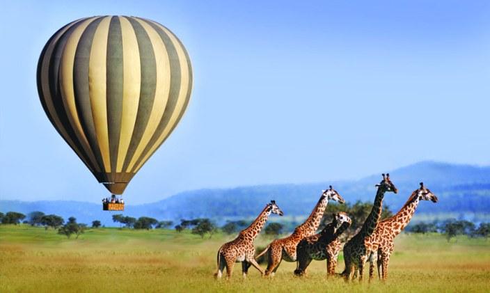 Take a hot-air balloon over the Serengeti