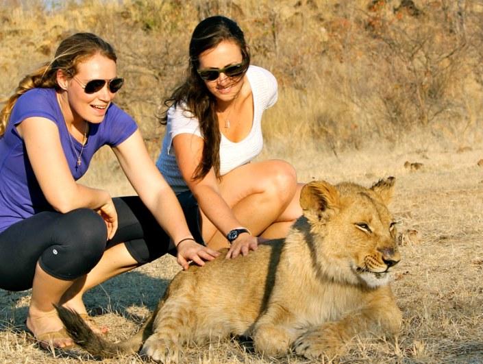 Zamibia Luxury Safari - Walk with Lions