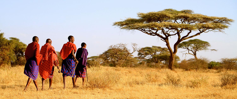 African safari kenya tours 1