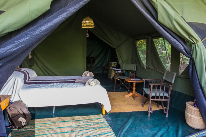 Congo Safari - Bukima Camp