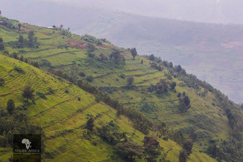Hills of Rwanda - part of the Congo Safari