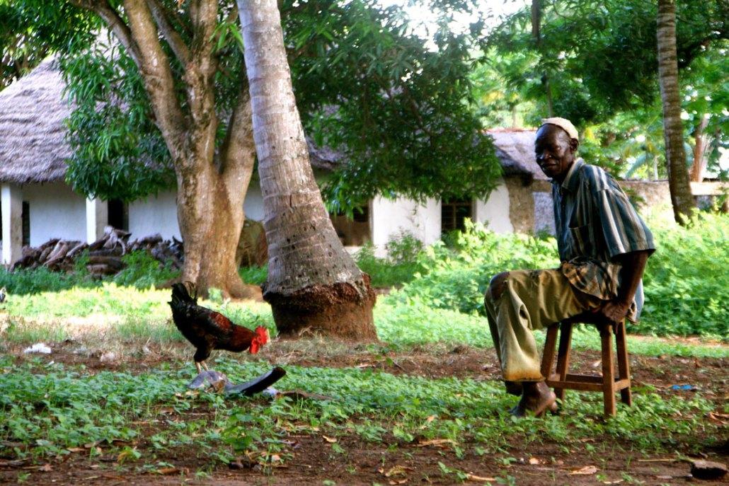 Village near Msambweni