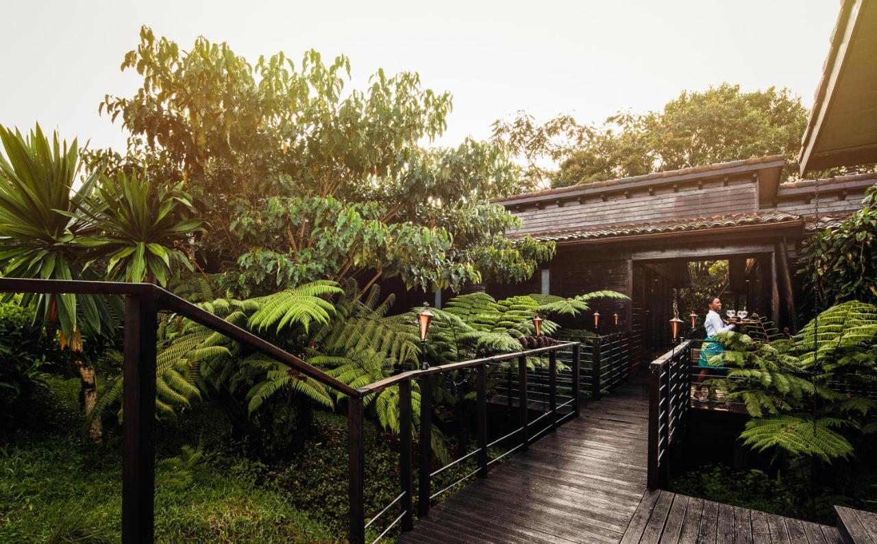 Atelier Africa Safaris, Luxury Safari, Rwanda, Destination, Nyungwe House